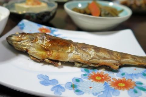 23川魚の塩焼き