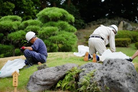07清澄庭園草取り