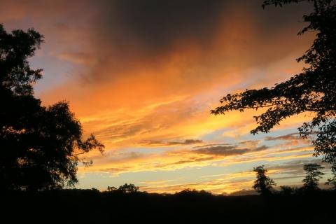 11今日の夕焼け空