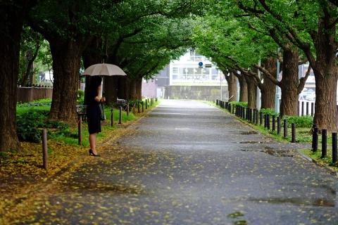 13神宮外苑へ