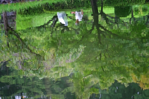 03薬師池