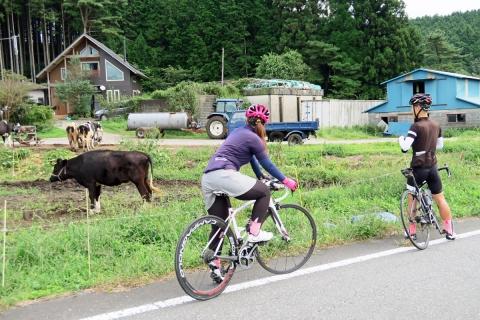 05朝霧高原サイクリング