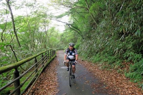 15芦ノ湖畔の道