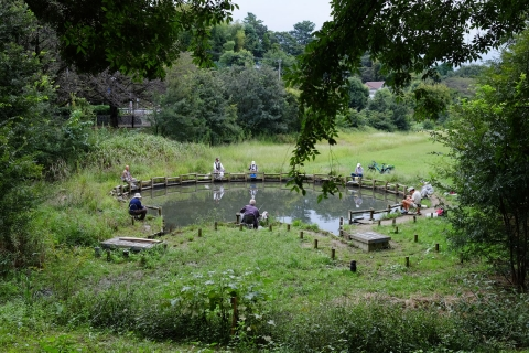 11野川公園