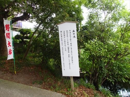 20160607_029.jpg