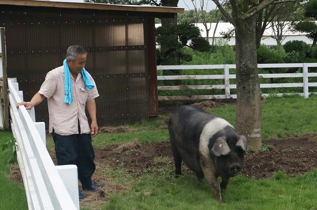 ふくどめ小牧場訪問2016年7月 (9)