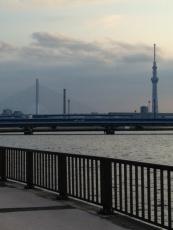 15中川散歩