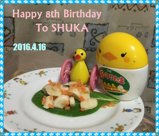 8歳の誕生日カード  空色のセキセイ珠霞