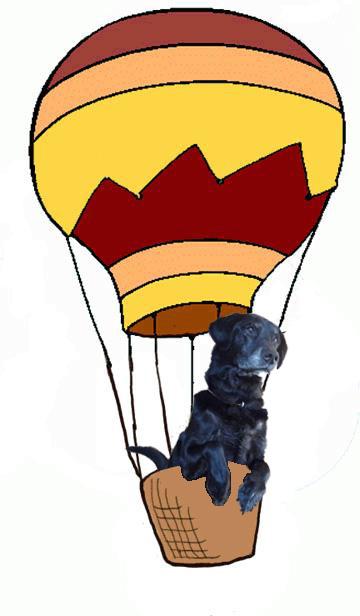 気球きんとき