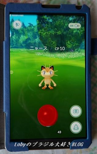 1-pikemon-go-01.jpg