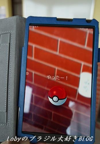 1-pikemon-go-03.jpg