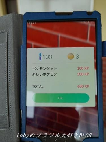 1-pikemon-go-04.jpg