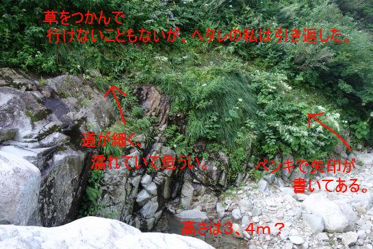 20160806nukubi0178b.jpg