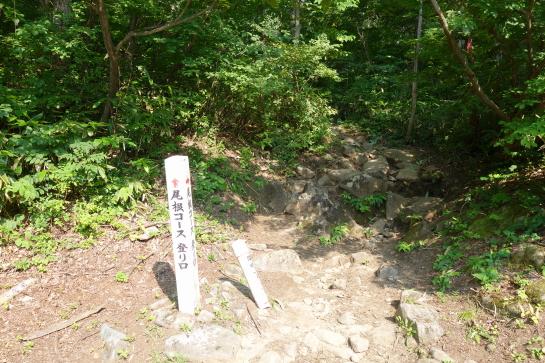 20160806nukubi0396.jpg