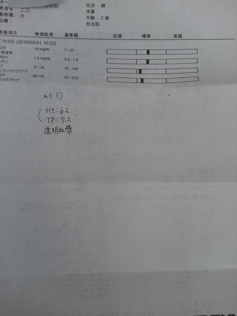 DCIM7012.jpg