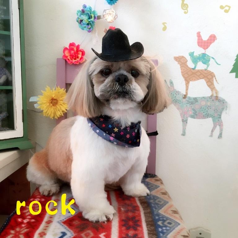 rock 渡辺