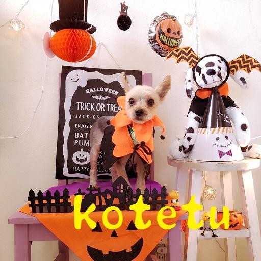 kotetu 田辺