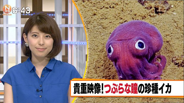 kamimura20160824_24.jpg