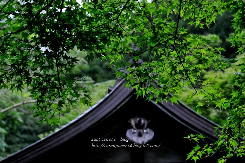 20160915engakuji012.jpg