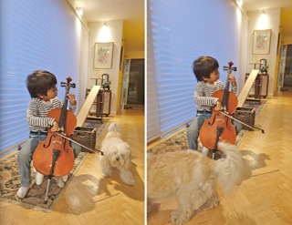 cello5_20160811193036c18.jpg