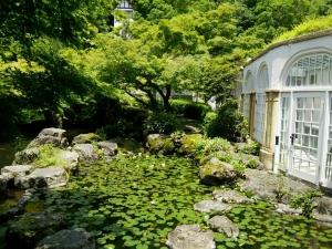 asahi beer pond