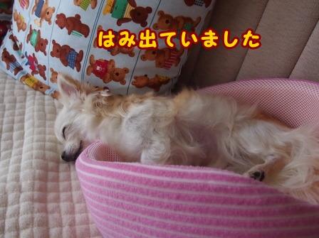 blog6636b.jpg