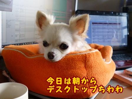 blog7440a.jpg