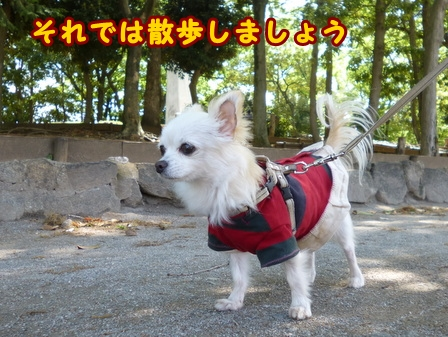 blog7495a.jpg
