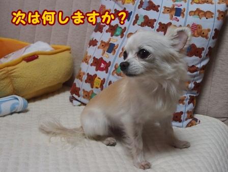 blog7537a.jpg