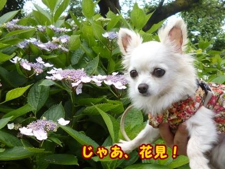 blog7622a.jpg