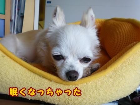 blog7642a.jpg