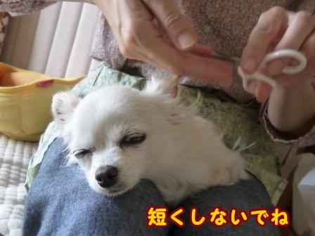 blog7669a.jpg