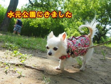blog7684a.jpg