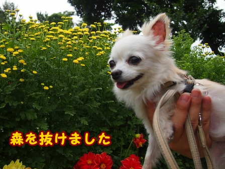 blog7757a.jpg