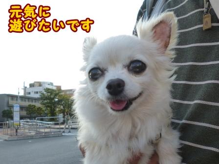 blog7768a.jpg