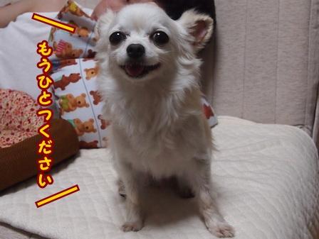 blog7785a.jpg