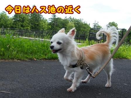 blog7812a.jpg