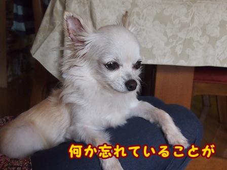 blog7878a.jpg