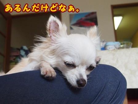 blog7879a.jpg