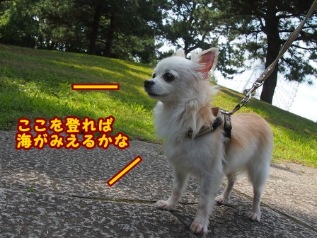 blog7889a.jpg