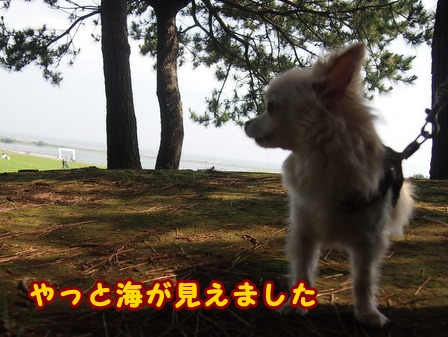 blog7896a.jpg