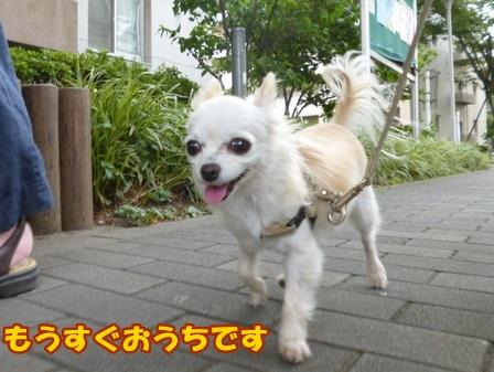 blog7911a.jpg