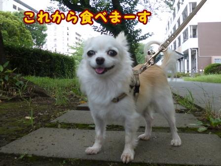 blog7914a.jpg