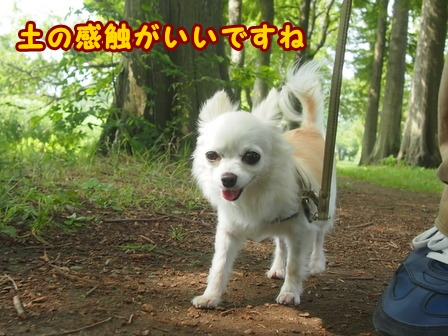 blog7916a.jpg