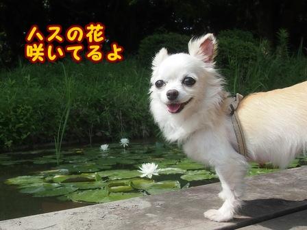 blog7922a.jpg