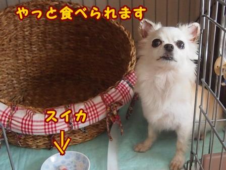blog7924a.jpg