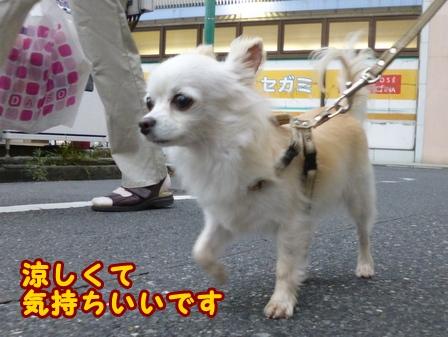 blog7940a.jpg