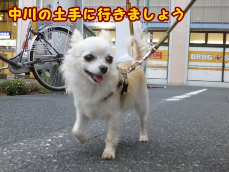 blog7941a.jpg