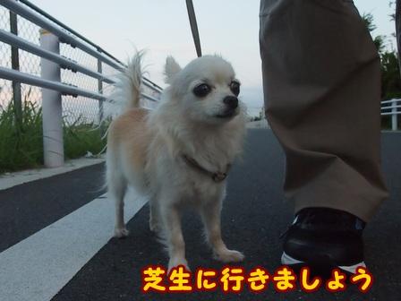 blog8042a.jpg