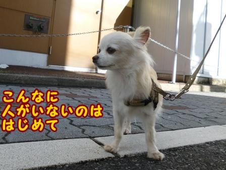 blog8083a.jpg